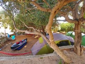 Camp -10