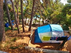 Camp -5